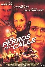 Como perros de la calle (2002)
