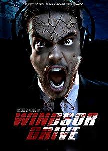 Get Windsor Drive USA [iPad]