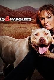 Pit Bulls and Parolees Poster