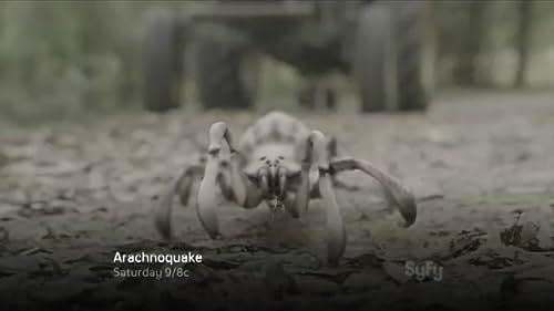 Arachnoquake