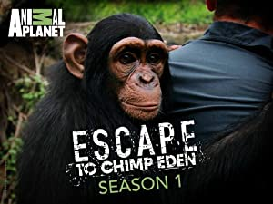 Where to stream Escape to Chimp Eden