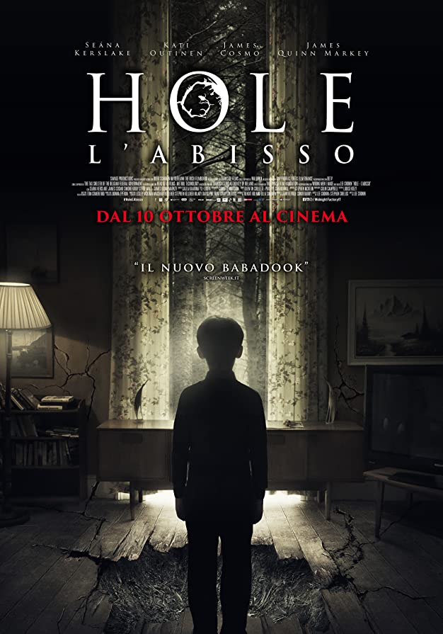 The Hole in the Ground (2020) AMZN WEB-DL Dual Audio [Hindi – English] x265 AAC ESUB