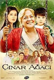 Cinar Agaci Poster