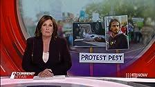 Protest Pest