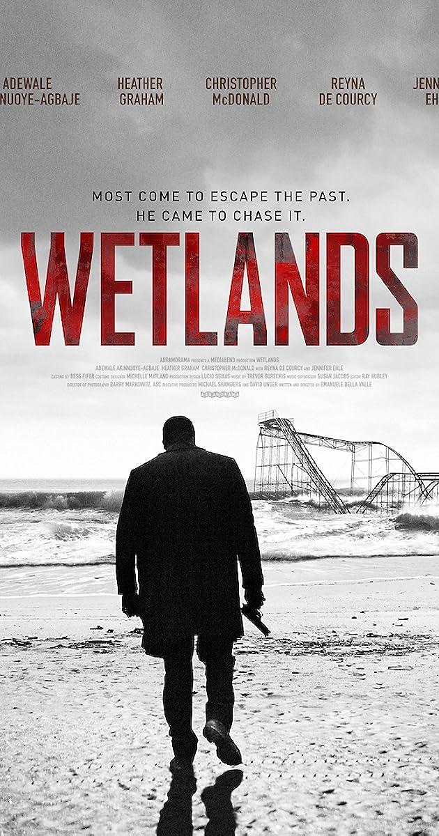 Subtitle of Wetlands
