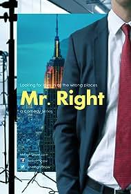 Mr. Right (2014)