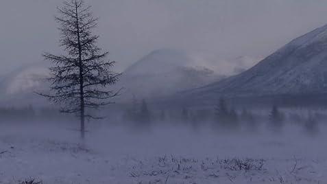 Wolves Unleashed 2011 trailer image
