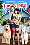Lucky Dog (2015)