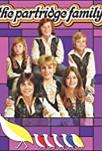 Primary image for The Partridge Family