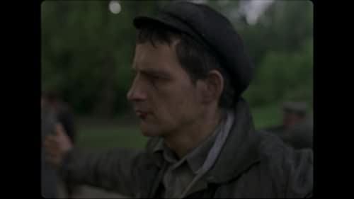 In the horror of 1944 Auschwitz, a prisoner forced to burn the corpses of his own people finds moral survival upon trying to salvage from the flames the body of a boy he takes for his son.