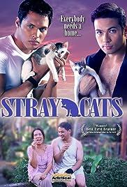 mga pusang gala full movie