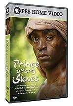Prince Among Slaves