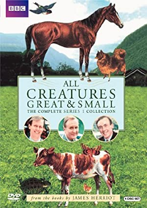 Where to stream All Creatures Great & Small