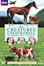 All Creatures Great and Small (1978) Poster