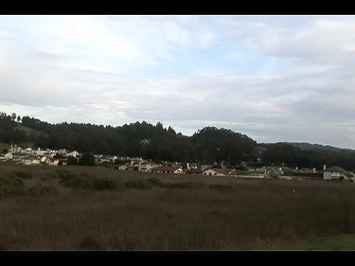 BIRDEMIC - Shock and Terror