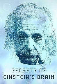 Primary photo for Secrets of Einstein's Brain