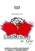 Carnations in Grey