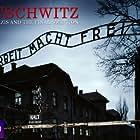 Auschwitz: The Nazis & the 'Final Solution' (2005)