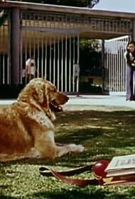 Joanna Pang in Isis (1975)