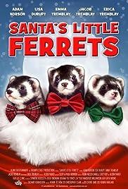 Santa's Little Ferrets Poster