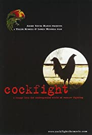 Cockfight Poster