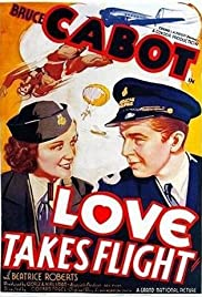 Love Takes Flight Poster