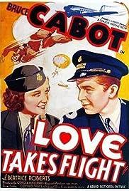 Love Takes Flight Poster