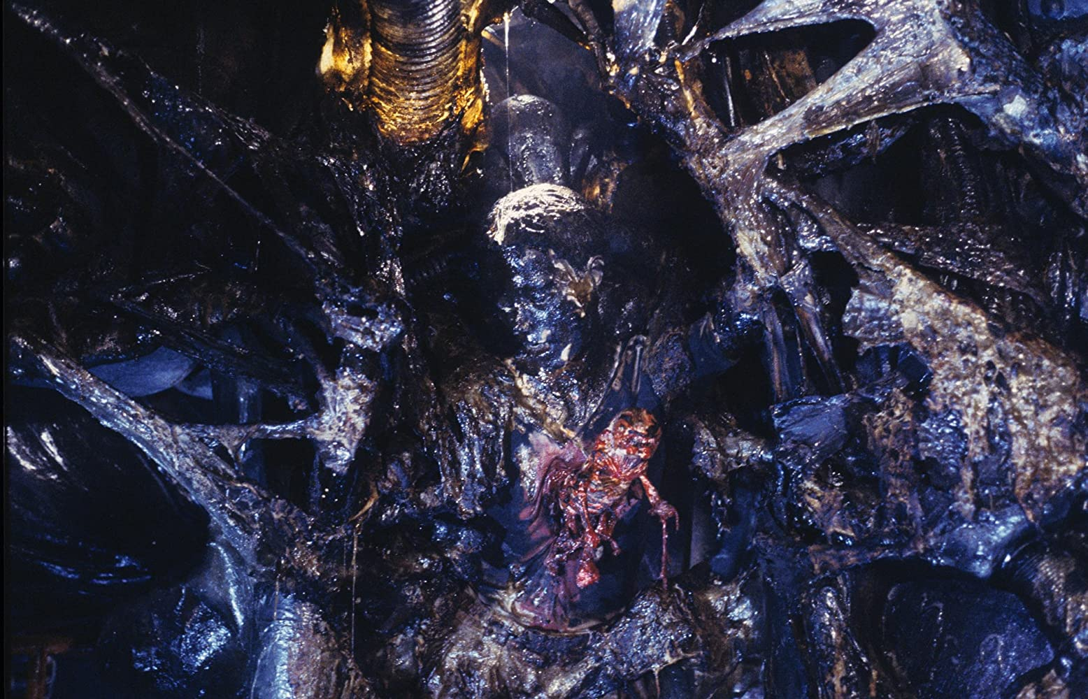 Barbara Coles in Aliens (1986)