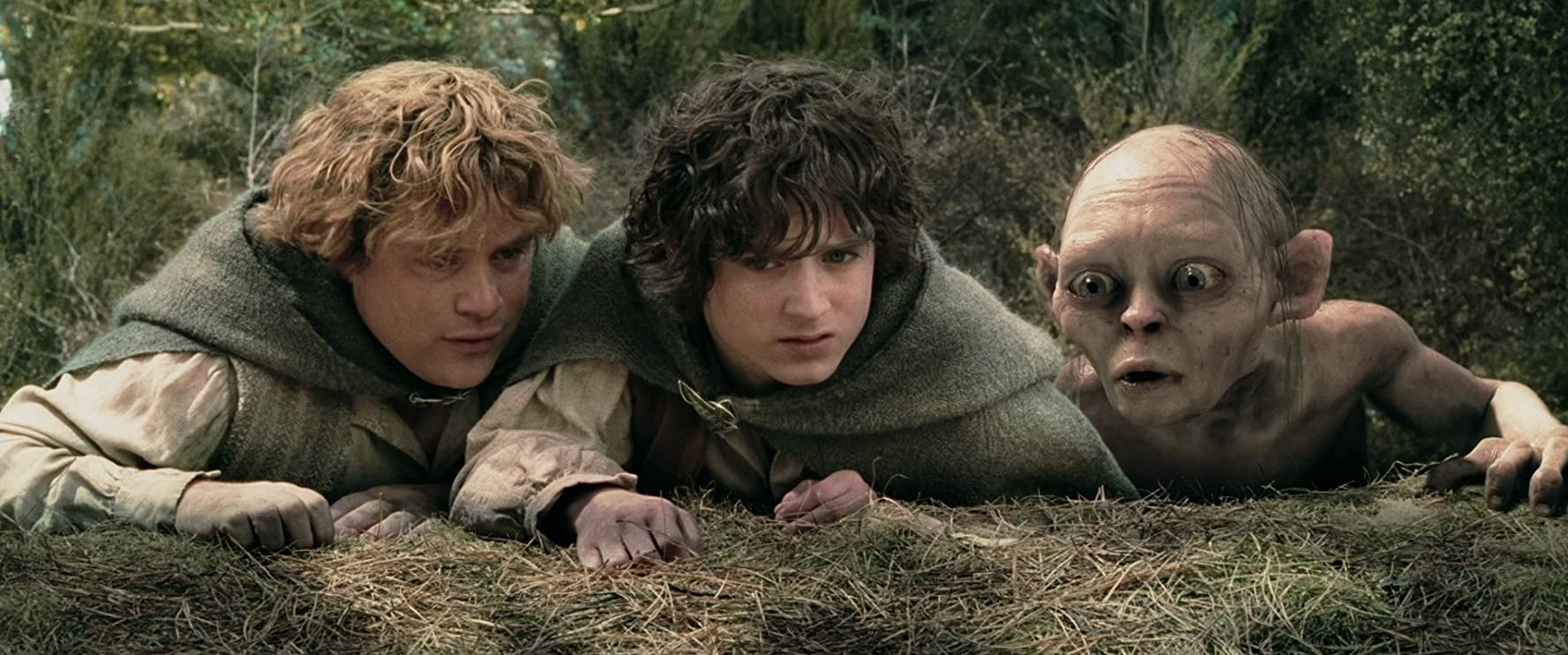 Sean Astin, Elijah Wood, and Andy Serkis in The Lord of the Rings: The Two Towers (2002)