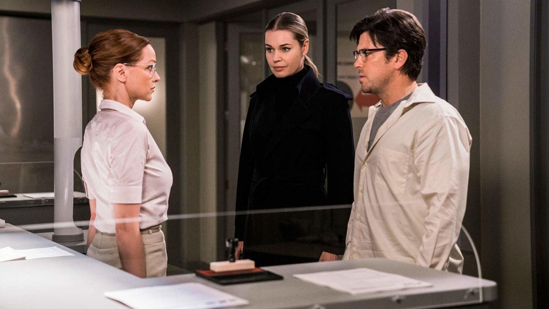 The series Librarians: actors, plot