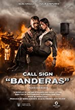 Call Sign Banderas