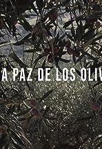 A La Paz De Los Olivos