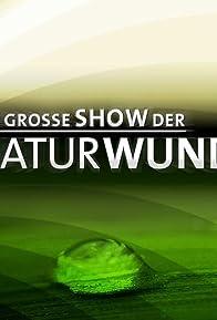Primary photo for Die große Show der Naturwunder