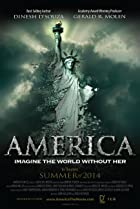 America: Imagine the World Without Her (2014) Poster