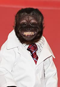 Primary photo for Crystal the Monkey