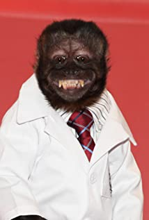 Crystal the Monkey Picture