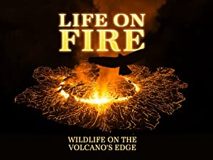 Where to stream Life on Fire: Wildlife on the Volcano's Edge