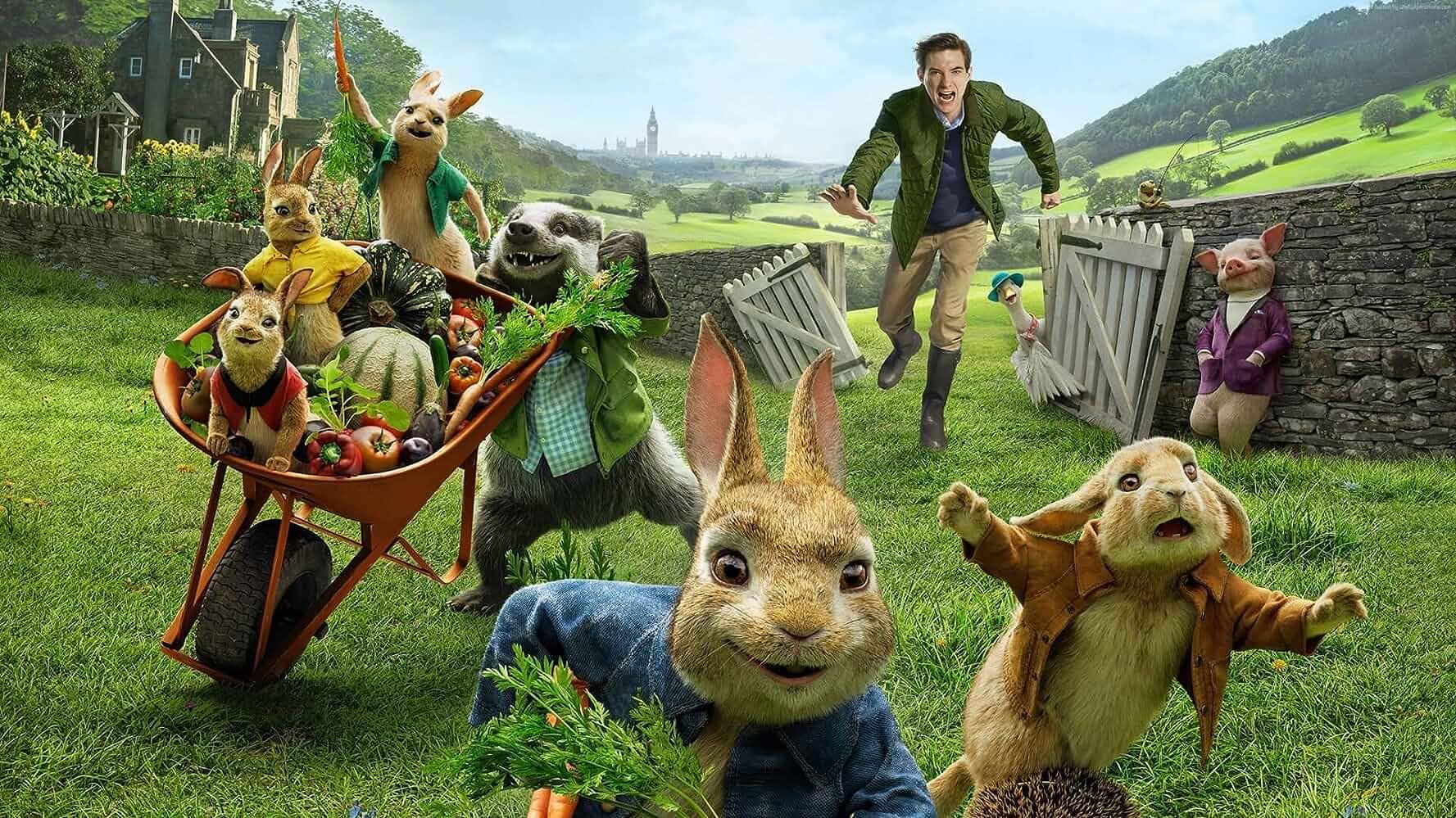 Domhnall Gleeson in Peter Rabbit (2018)
