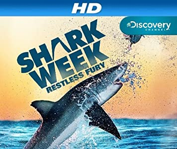 Into the Shark Bite sub download