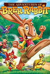Primary photo for The Adventures of Brer Rabbit