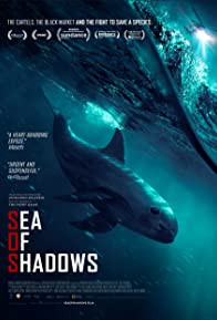Primary photo for Sea of Shadows