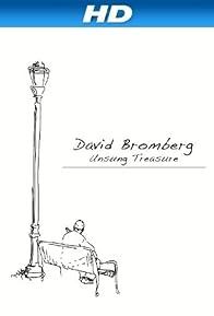 Primary photo for David Bromberg: Unsung Treasure