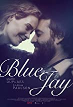 Primary image for Blue Jay