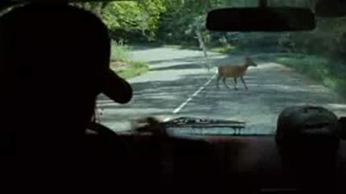 """""""Deer in Road"""" from from The Descent: Part 2"""