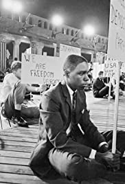 Freedom Summer Poster