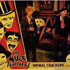 Chico Marx and Harpo Marx in Animal Crackers (1930)