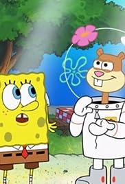 spongebob squarepants mooncation mr krabs takes a vacation tv