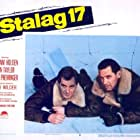 William Holden and Don Taylor in Stalag 17 (1953)