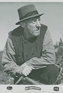 Emil Fjellström Picture