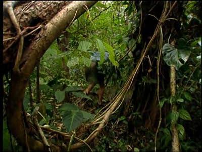 Watching movie Costa Rica: The Arribiatta by [640x352]
